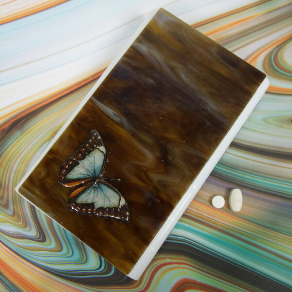 Brown Blue Butterfly Large 28-dose Pillbox