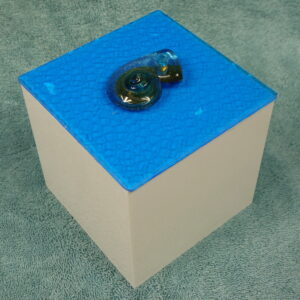 Blue Snail UnderCover