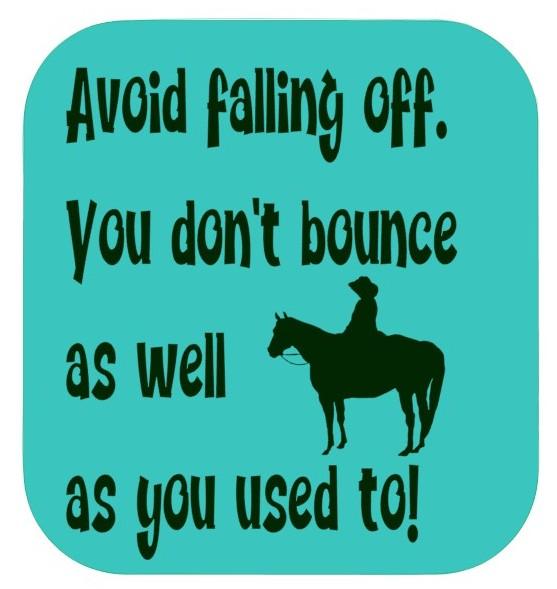 Horsey Magnet--Avoid Falling Off