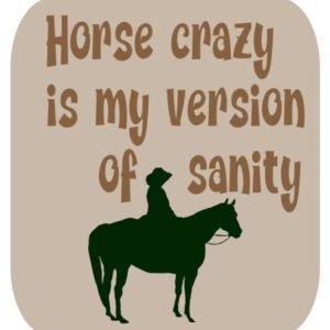 Horsey Magnet--Horse Crazy