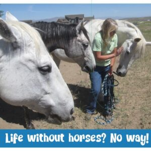 Horsey Magnet--LIfe Without Horses