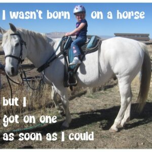 Horsey Magnet--Wasn't born on a horse