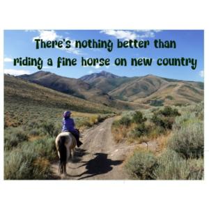 Horsey Magnet--Nothing Better Photo